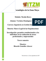 Investigacion de Las Garantias Constitucionales