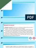 Presentación1 ED.pptx