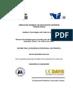 Nuevas tecnologías para la producción de fresa (Fragaria x ananassa Duch.) en cultivo sin suelo.pdf