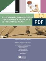 entrenamiento propioceptivo esguince de tobillo en Hockey patín