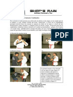 apunte_tonfa_basico.pdf