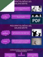 Psicopatologías Del Delincuente