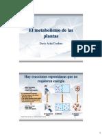 2-1 El Metabolismo de Las Plantas
