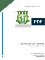 3. Análisis Informe Brundtland