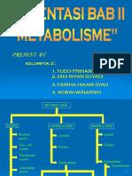 metabolisme 2