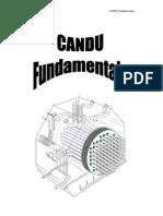 candu fundamentals20040700