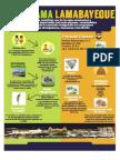 Infografia Comercio- Pool and Fio