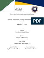 Reporte de Estancia Maquin