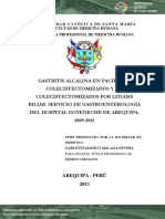 Gastritis Alcalina