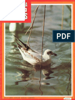 Enciclopedia de Los Animales 103
