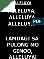 ALLELUYA_33