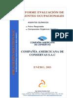 2. Informe Agentes Químicos -Compañía Americana de Conservas S (1)