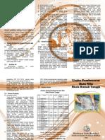 Leaflet Pembesaran Ikan Nila Skala Rumah Tangga