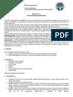 Instructivo Practica 2 Microscopía b1 Efpe m 2014