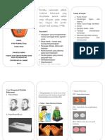 272625681-Leaflet-Rpk.docx