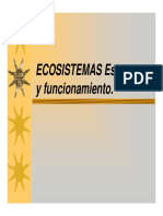 05 Eco Sistema
