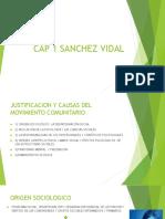 Cap 1 Sanchez Vidal