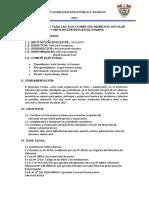 plan comite electoral.docx