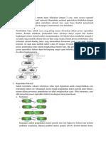 Reproduksi Bakteri materi