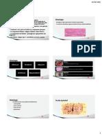 Tecidos bases biologica.pdf