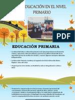 La Educacin en El Nivel Primario 170827023235
