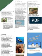 Triptico Animales en Peligro de Extincion