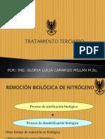 Tratamiento Terciario y Gestion Lodos Ptar II Ic 2016 (1)