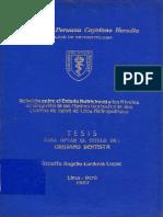 Renatto Rogelio Cordova Luque