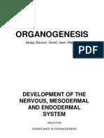 Organogenesis Final