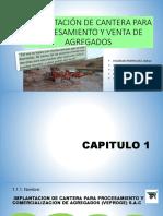 Implantación de Cantera Para Procesamiento y Venta De