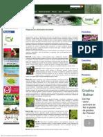 Ghid de recunoasterea deficientelor de nutritie la plante