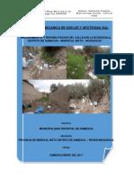 Informe Samegua Callejon Bodeguilla SAMEGUA