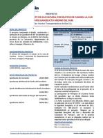 ProyectoGasoductoAndinoSur02012014