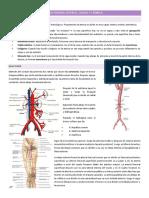 3. Insuficiencia Arterial