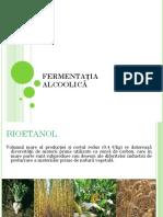 7+8-Fermentatia   alcoolica-Tehnologia berii