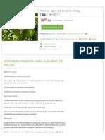 agris urias de pallag.pdf