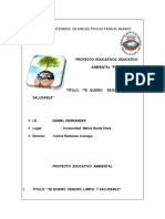 61968290 Proyecto Educativo Ambiental Institucional