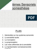 Systeme sensoriel somesthesie