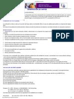 Generacion de Vapor en Extractoras de Aceite de Palma