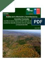Informe Afectacion y Severidad de Incendios Forestales Verano 2017 Sobre Ecosistemas Vegetacionales Conaf