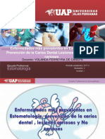 Ppt Lesiones Cariosas Clase 03 (1)