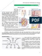 10 - Fisiologia Renal