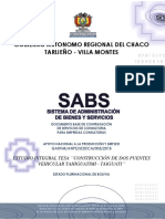 DBC TESA Puentes 15