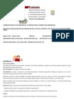 PA DE AULA ESPECIAL NUEVO (1).docx