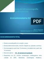 Eco Fetal