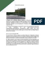 Reserva de La Biosfera Montes Azules