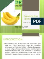 Agroindustria del banano.pptx
