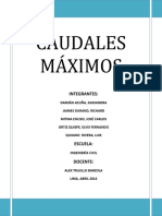 INFORME-CAUDALES-MAXIMOS.docx