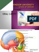 Oral Cavity.pptx