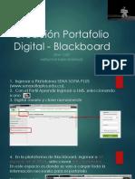 Creación Portafolio Del APRENDIZ